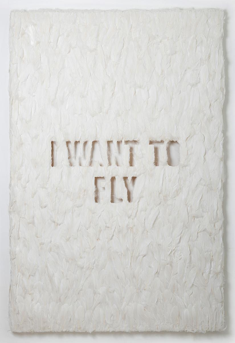 FLY_Hero_Web